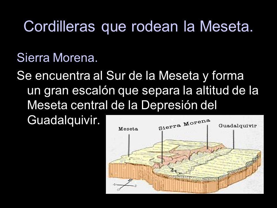 Sierra Morena. Se encuentra al Sur de la Meseta y forma un gran escalón que separa la altitud de la Meseta central de la Depresión del Guadalquivir.