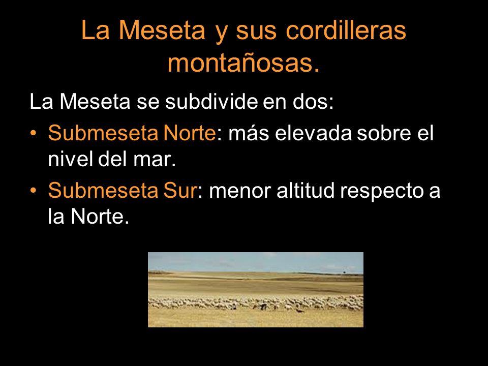 La Meseta se subdivide en dos: Submeseta Norte: más elevada sobre el nivel del mar. Submeseta Sur: menor altitud respecto a la Norte.