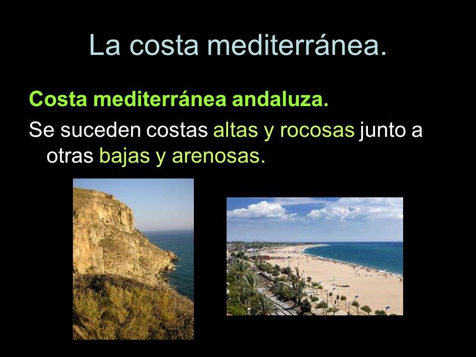 La costa mediterránea. Costa mediterránea andaluza. Se suceden costas altas y rocosas junto a otras bajas y arenosas.