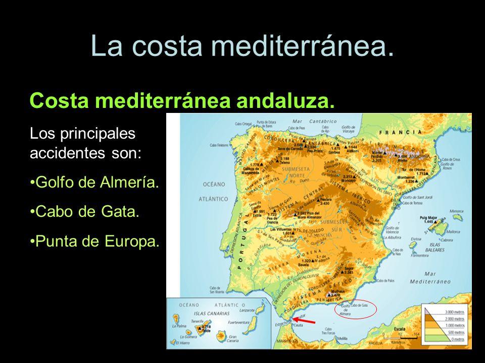 La costa mediterránea. Costa mediterránea andaluza. Los principales accidentes son: Golfo de Almería. Cabo de Gata. Punta de Europa.