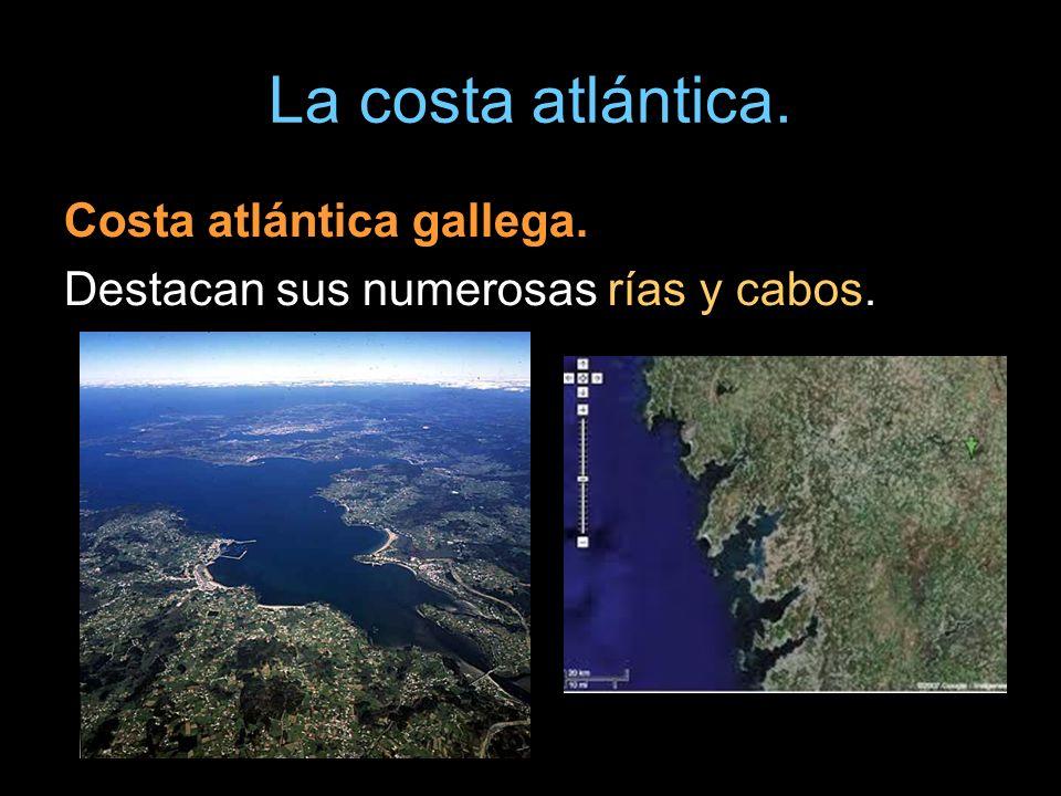 La costa atlántica. Costa atlántica gallega. Destacan sus numerosas rías y cabos.