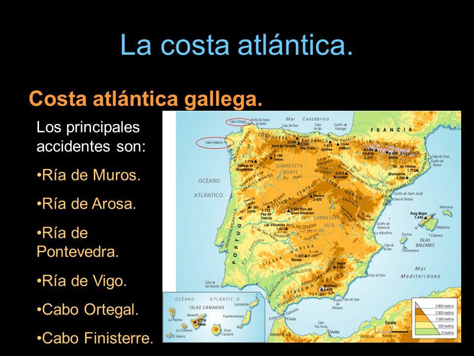 La costa atlántica. Costa atlántica gallega. Los principales accidentes son: Ría de Muros. Ría de Arosa. Ría de Pontevedra. Ría de Vigo. Cabo Ortegal.