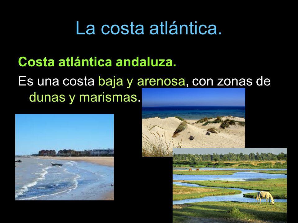 Costa atlántica andaluza. Es una costa baja y arenosa, con zonas de dunas y marismas.