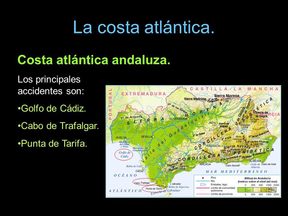 La costa atlántica. Costa atlántica andaluza. Los principales accidentes son: Golfo de Cádiz. Cabo de Trafalgar. Punta de Tarifa.