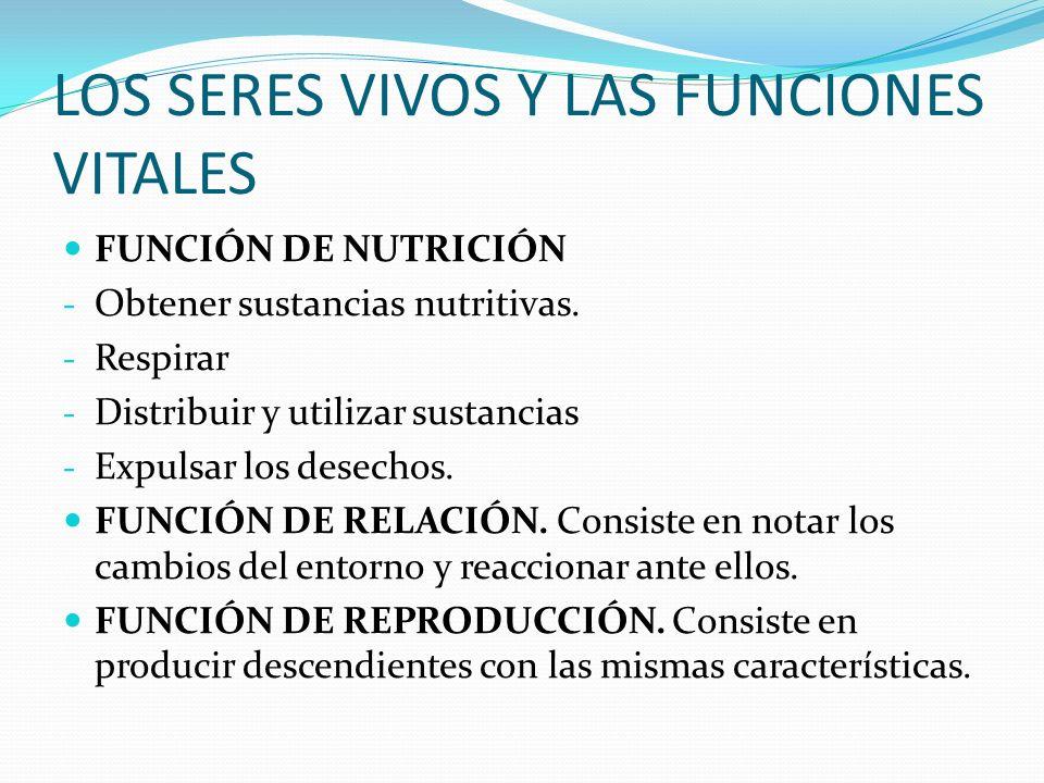 LOS SERES VIVOS Y LAS FUNCIONES VITALES FUNCIÓN DE NUTRICIÓN - Obtener sustancias nutritivas.