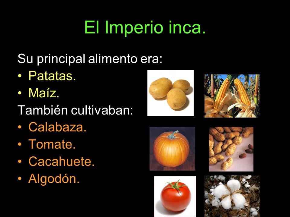 Su principal alimento era: Patatas. Maíz. También cultivaban: Calabaza. Tomate. Cacahuete. Algodón.