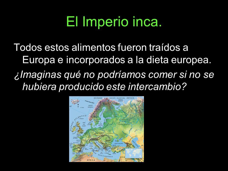 El Imperio inca. Todos estos alimentos fueron traídos a Europa e incorporados a la dieta europea. ¿Imaginas qué no podríamos comer si no se hubiera pr