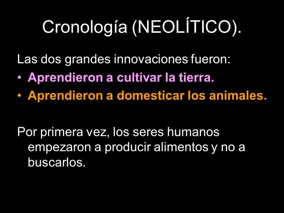 Las dos grandes innovaciones fueron: Aprendieron a cultivar la tierra. Aprendieron a domesticar los animales. Por primera vez, los seres humanos empez