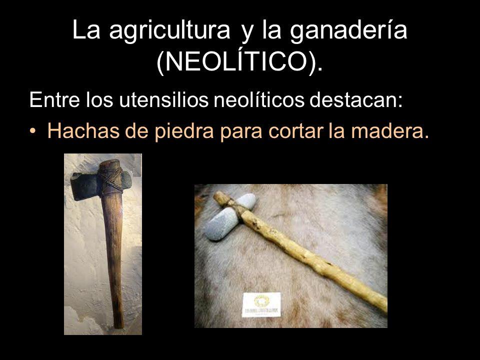 La agricultura y la ganadería (NEOLÍTICO). Entre los utensilios neolíticos destacan: Hachas de piedra para cortar la madera.