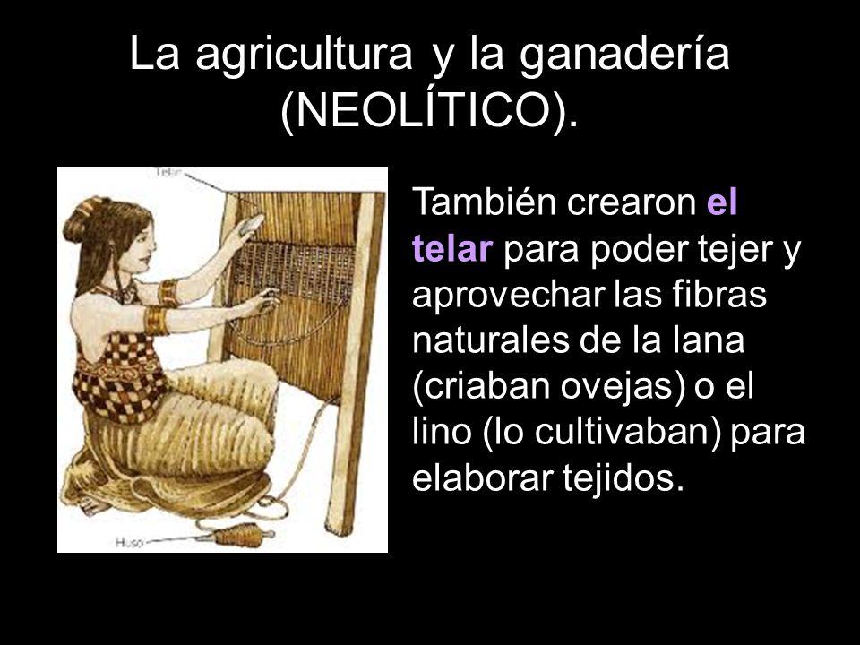 También crearon el telar para poder tejer y aprovechar las fibras naturales de la lana (criaban ovejas) o el lino (lo cultivaban) para elaborar tejidos.