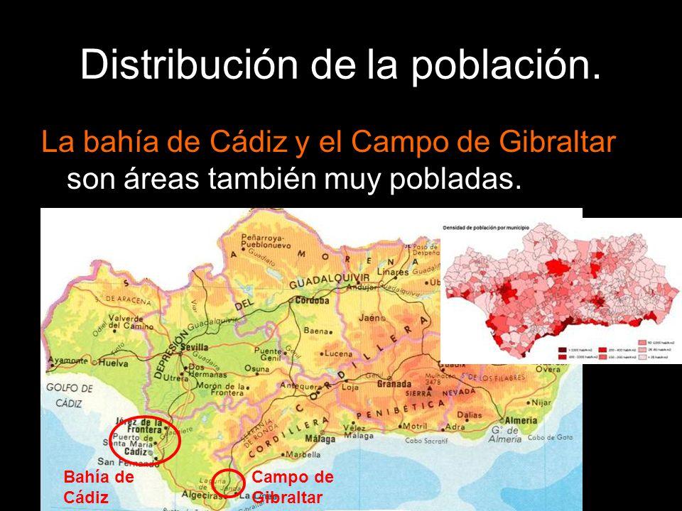 La bahía de Cádiz y el Campo de Gibraltar son áreas también muy pobladas. Bahía de Cádiz Campo de Gibraltar