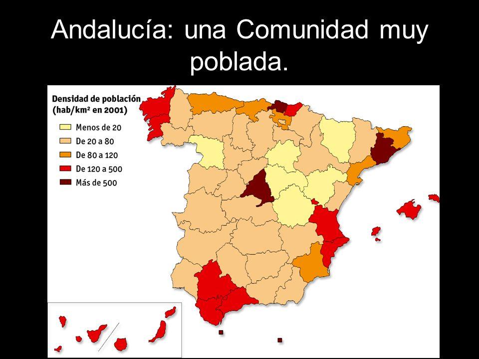 La bahía de Cádiz y el Campo de Gibraltar son áreas también muy pobladas.