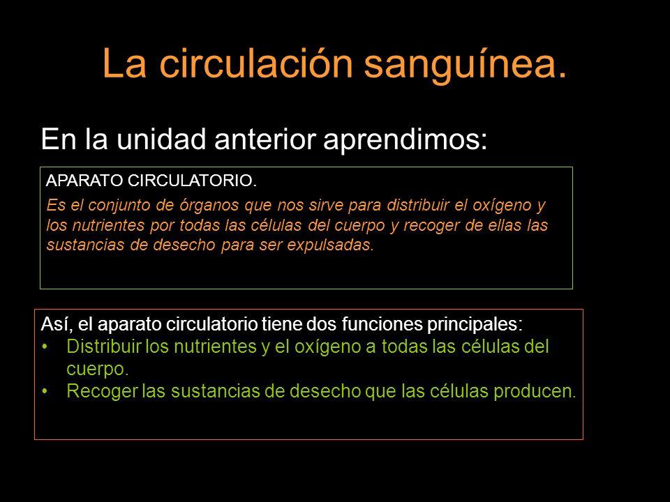 http://irati.pnte.cfnavarra.es/multiblog/jrodrig 3/sexto/c-m/tema-11-nutricion-respiracion- y-circulacion
