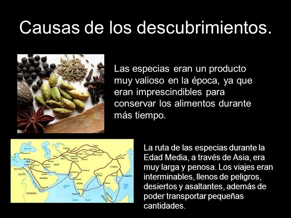 Causas de los descubrimientos. Las especias eran un producto muy valioso en la época, ya que eran imprescindibles para conservar los alimentos durante