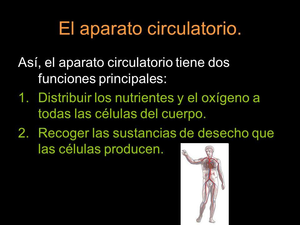 El aparato circulatorio. Así, el aparato circulatorio tiene dos funciones principales: 1.Distribuir los nutrientes y el oxígeno a todas las células de