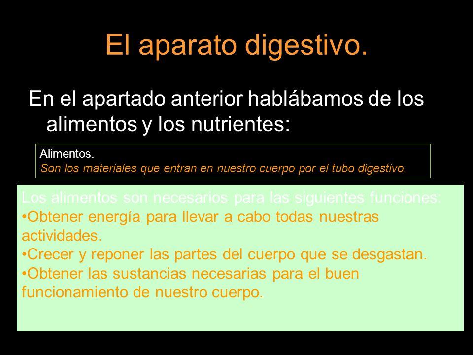 En el apartado anterior hablábamos de los alimentos y los nutrientes: Alimentos. Son los materiales que entran en nuestro cuerpo por el tubo digestivo