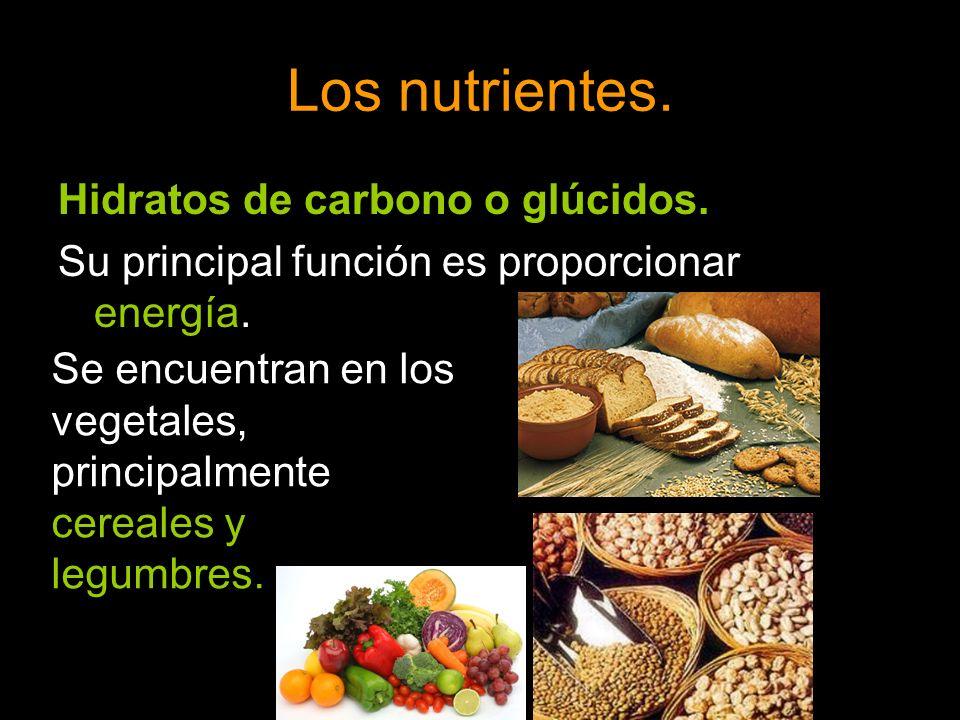 Los nutrientes. Hidratos de carbono o glúcidos. Su principal función es proporcionar energía. Se encuentran en los vegetales, principalmente cereales