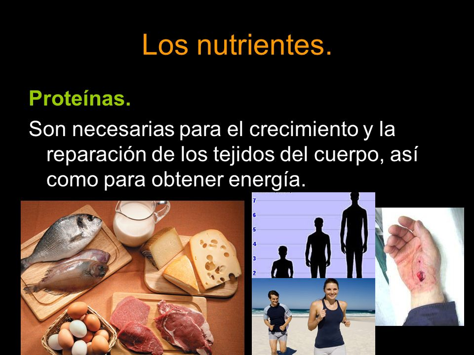 Los nutrientes. Proteínas. Son necesarias para el crecimiento y la reparación de los tejidos del cuerpo, así como para obtener energía.