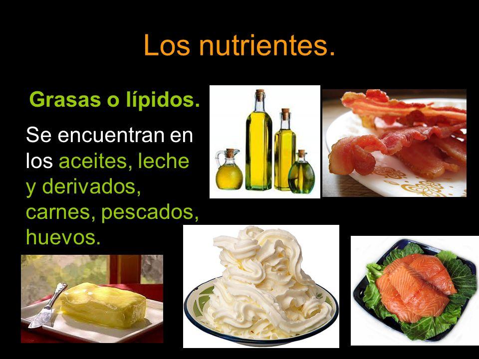 Los nutrientes. Grasas o lípidos. Se encuentran en los aceites, leche y derivados, carnes, pescados, huevos.
