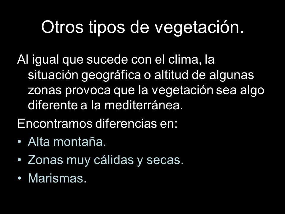 Otros tipos de vegetación. Al igual que sucede con el clima, la situación geográfica o altitud de algunas zonas provoca que la vegetación sea algo dif