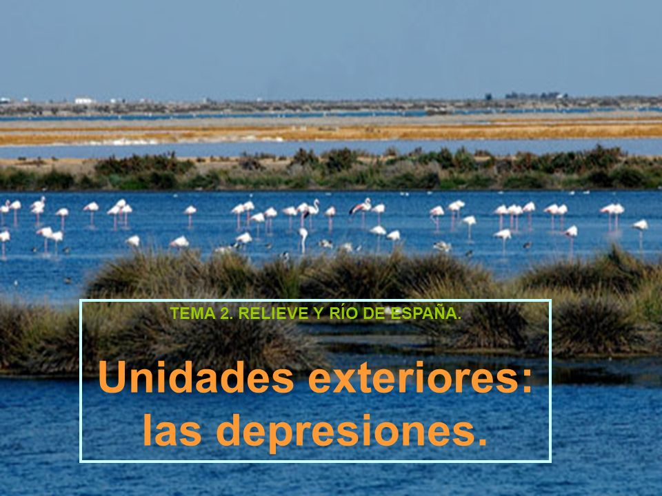 TEMA 2. RELIEVE Y RÍO DE ESPAÑA. Unidades exteriores: las depresiones.