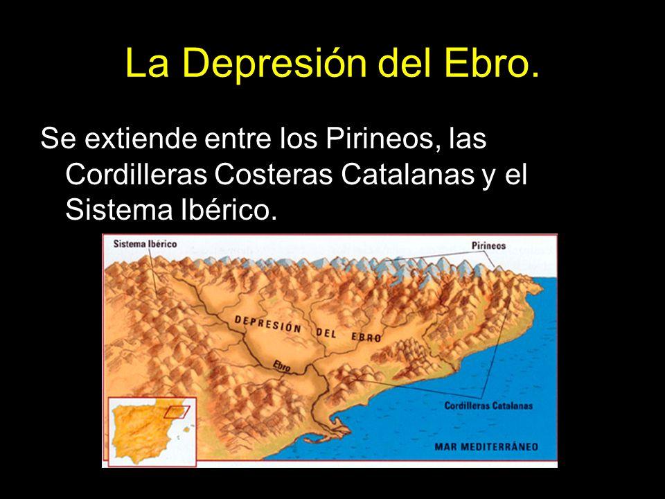 La Depresión del Ebro. Se extiende entre los Pirineos, las Cordilleras Costeras Catalanas y el Sistema Ibérico.