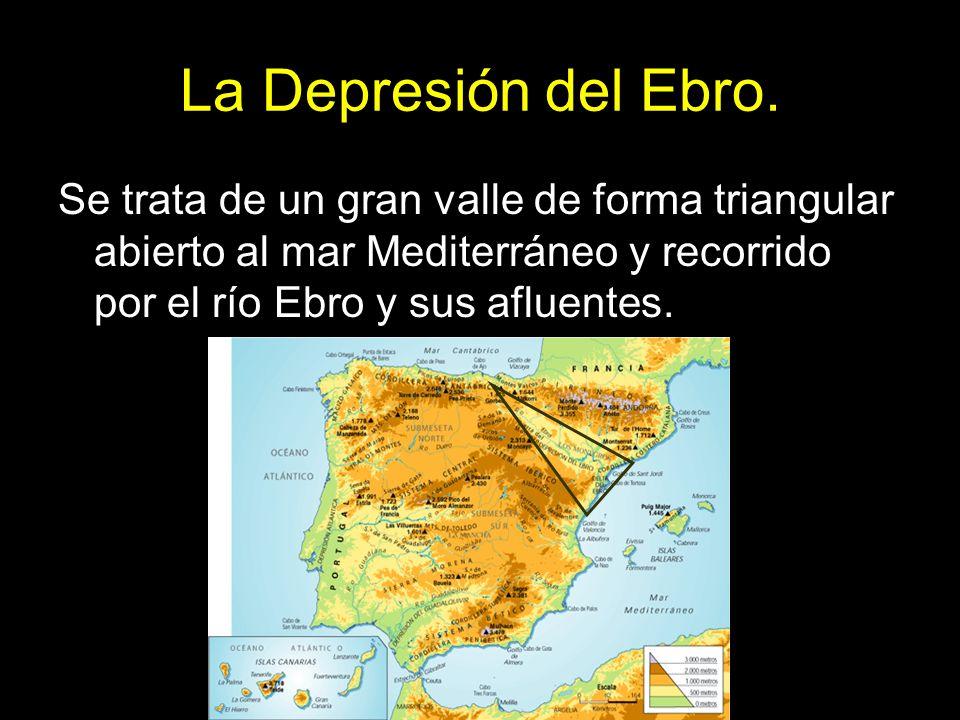 La Depresión del Ebro. Se trata de un gran valle de forma triangular abierto al mar Mediterráneo y recorrido por el río Ebro y sus afluentes.
