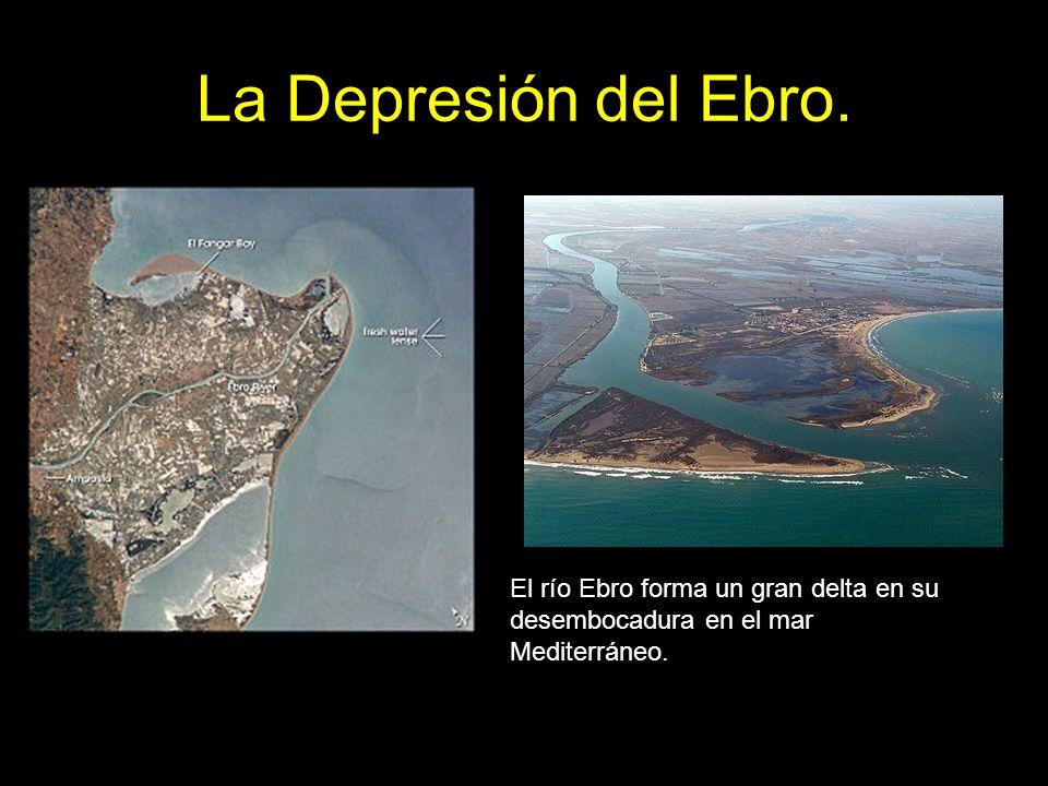 El río Ebro forma un gran delta en su desembocadura en el mar Mediterráneo.