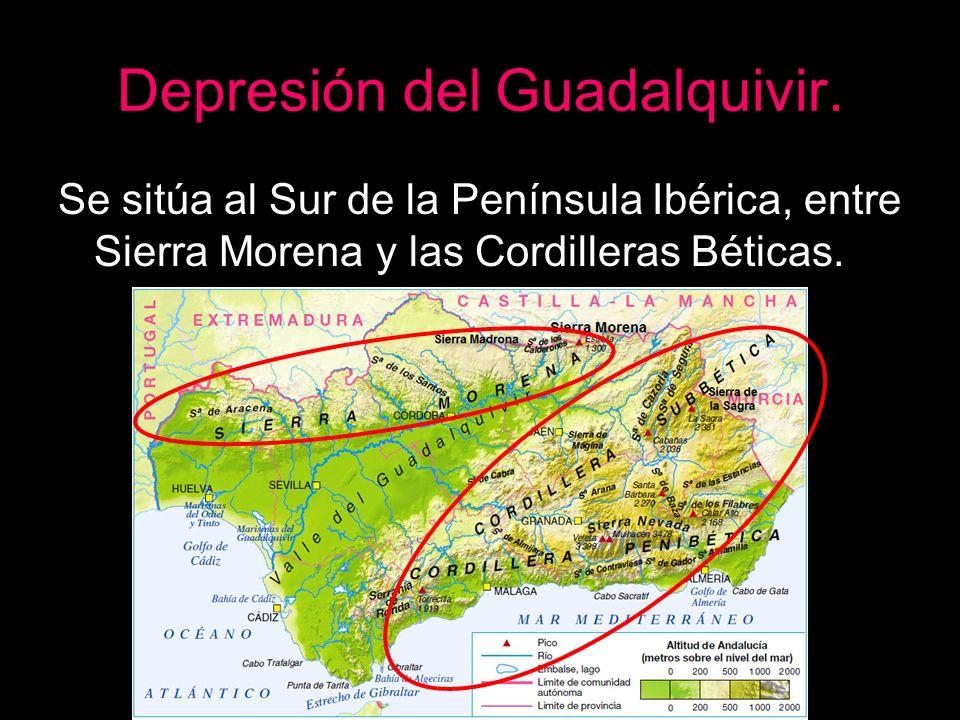 Depresión del Guadalquivir. Se sitúa al Sur de la Península Ibérica, entre Sierra Morena y las Cordilleras Béticas.