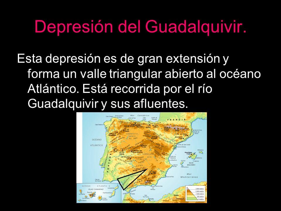 Depresión del Guadalquivir. Esta depresión es de gran extensión y forma un valle triangular abierto al océano Atlántico. Está recorrida por el río Gua
