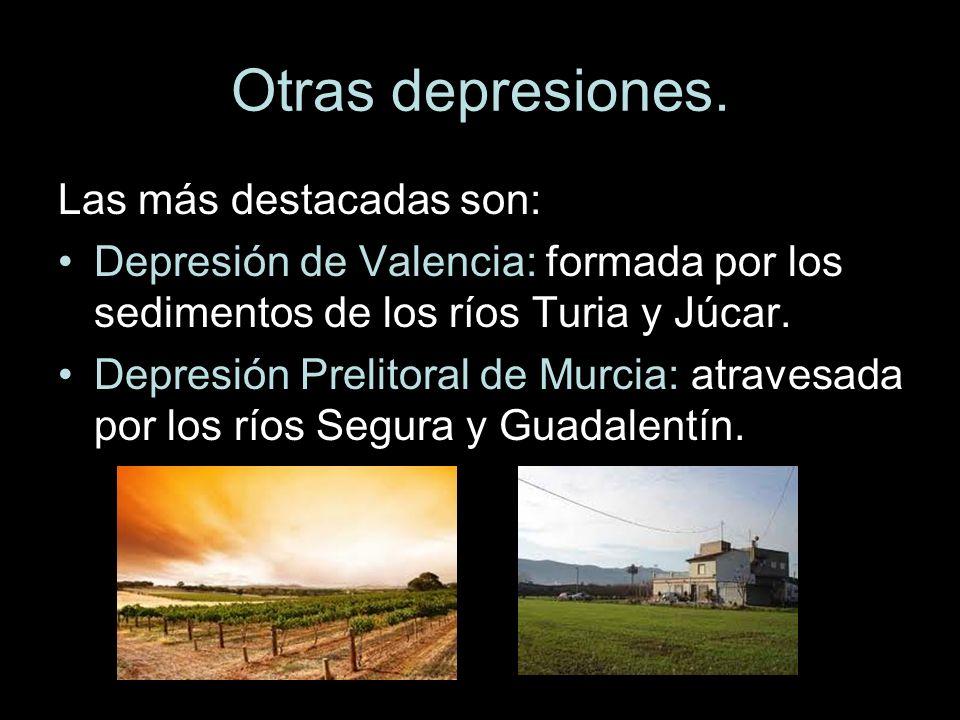 Otras depresiones. Las más destacadas son: Depresión de Valencia: formada por los sedimentos de los ríos Turia y Júcar. Depresión Prelitoral de Murcia