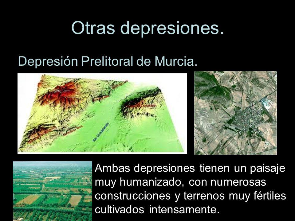 Otras depresiones. Depresión Prelitoral de Murcia. Ambas depresiones tienen un paisaje muy humanizado, con numerosas construcciones y terrenos muy fér