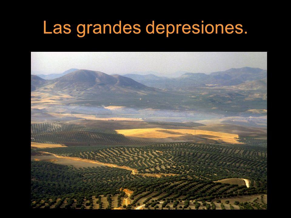 Las depresiones suelen tener un suelo muy fértil para el cultivo de muchos productos agrícolas, generalmente de regadío.