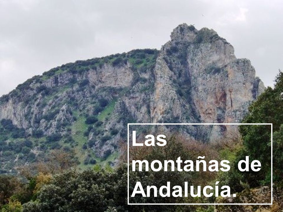Las montañas de Andalucía.