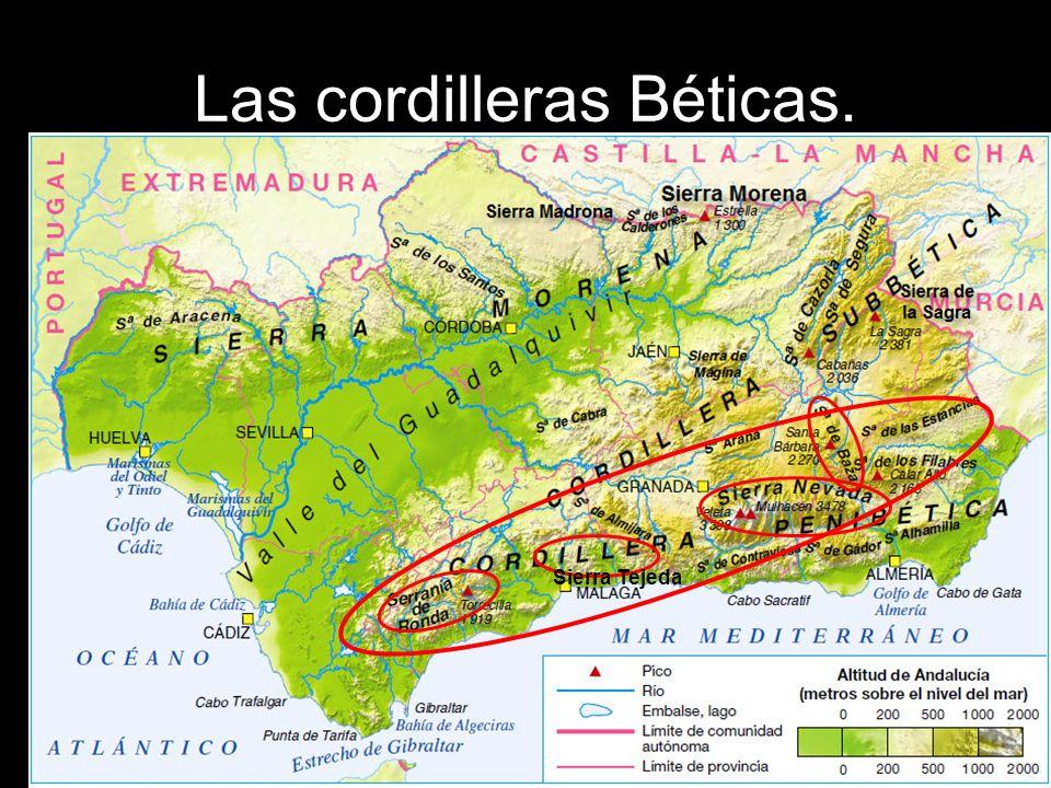 Las cordilleras Béticas. Sierra Tejeda