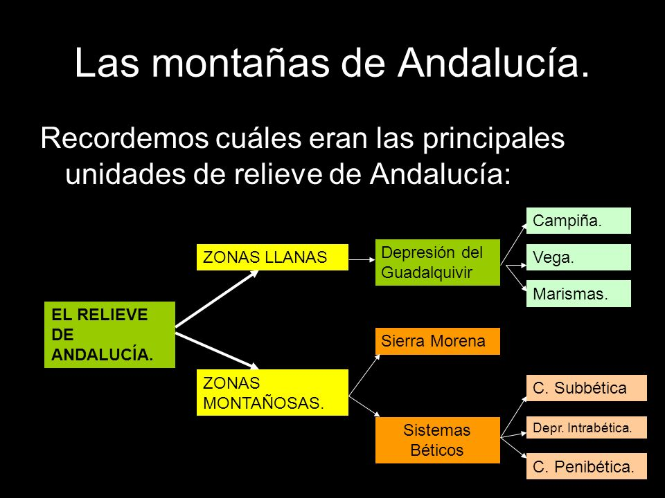 Recordemos cuáles eran las principales unidades de relieve de Andalucía: EL RELIEVE DE ANDALUCÍA. ZONAS LLANAS ZONAS MONTAÑOSAS. Depresión del Guadalq