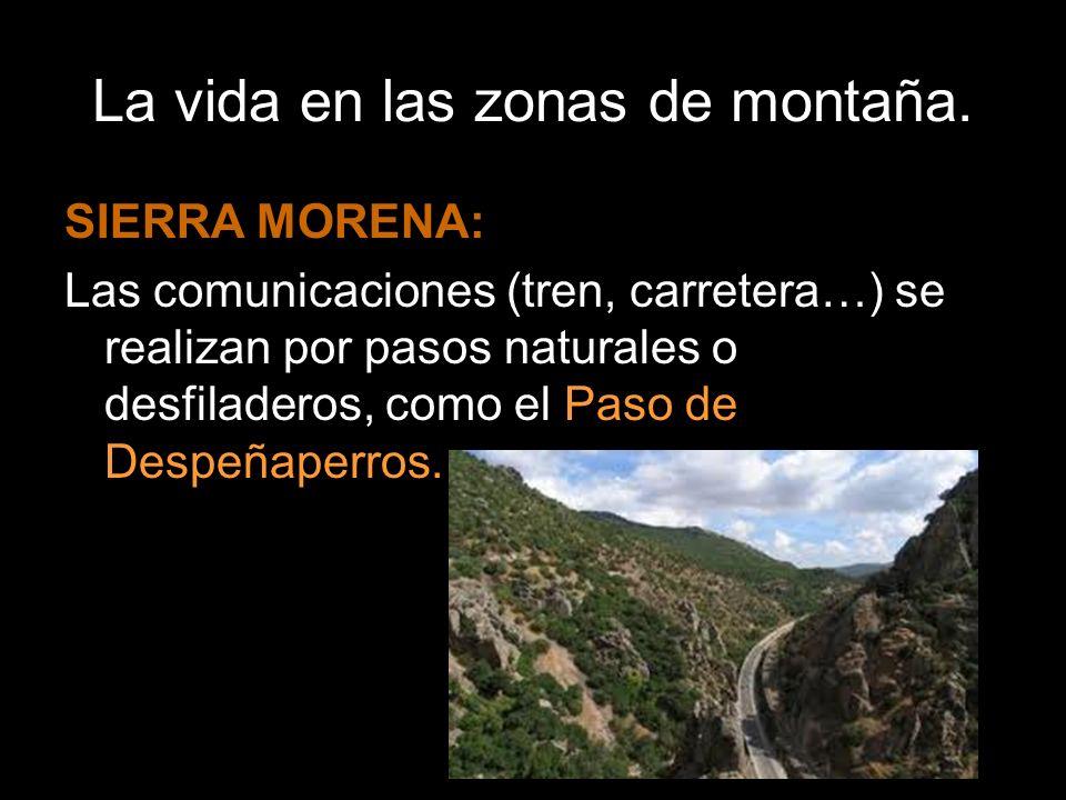 La vida en las zonas de montaña. SIERRA MORENA: Las comunicaciones (tren, carretera…) se realizan por pasos naturales o desfiladeros, como el Paso de
