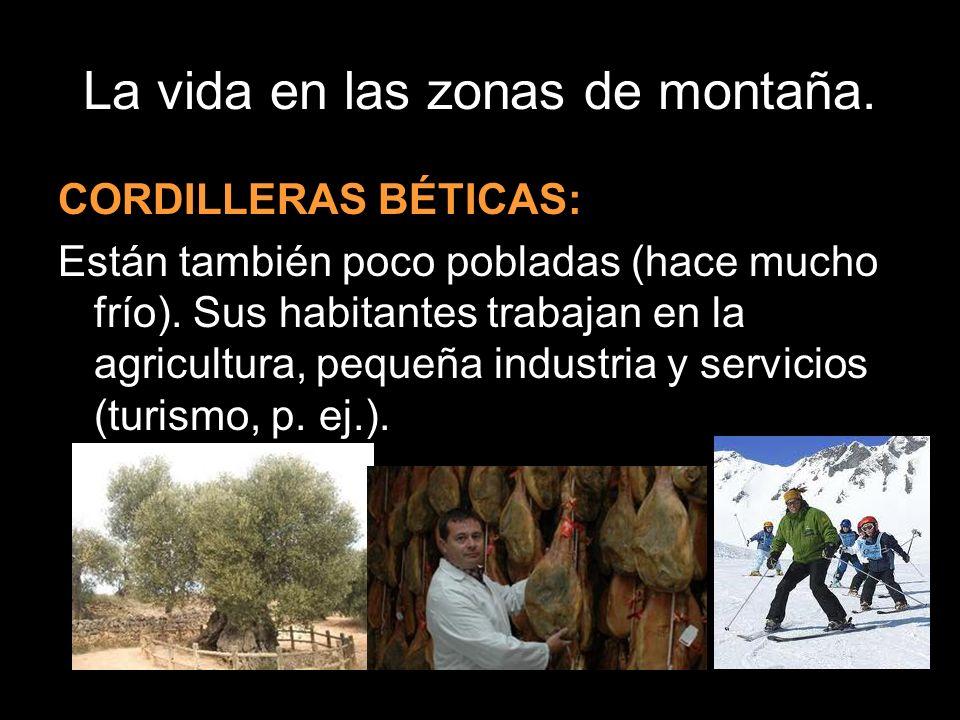 CORDILLERAS BÉTICAS: Están también poco pobladas (hace mucho frío). Sus habitantes trabajan en la agricultura, pequeña industria y servicios (turismo,