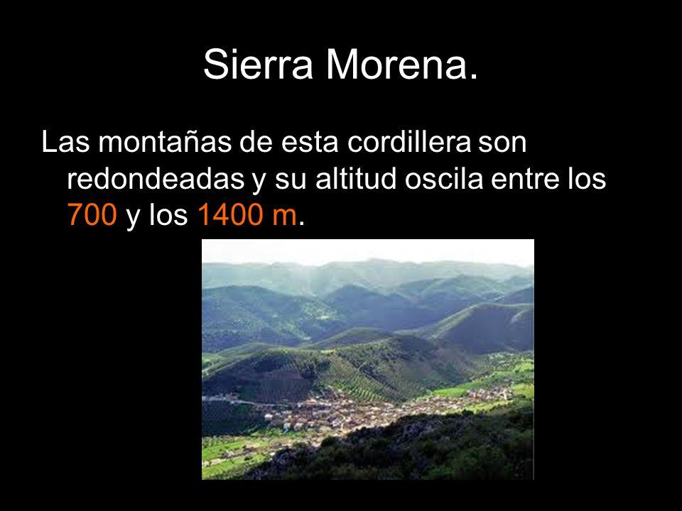 Las montañas de esta cordillera son redondeadas y su altitud oscila entre los 700 y los 1400 m.
