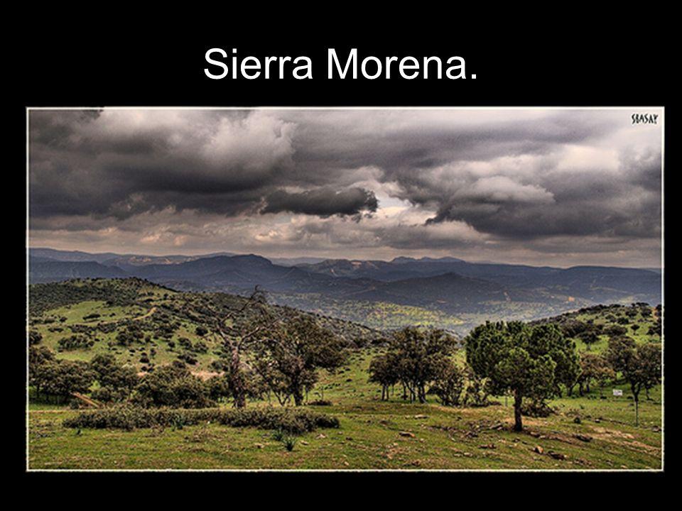 Sierra Morena.