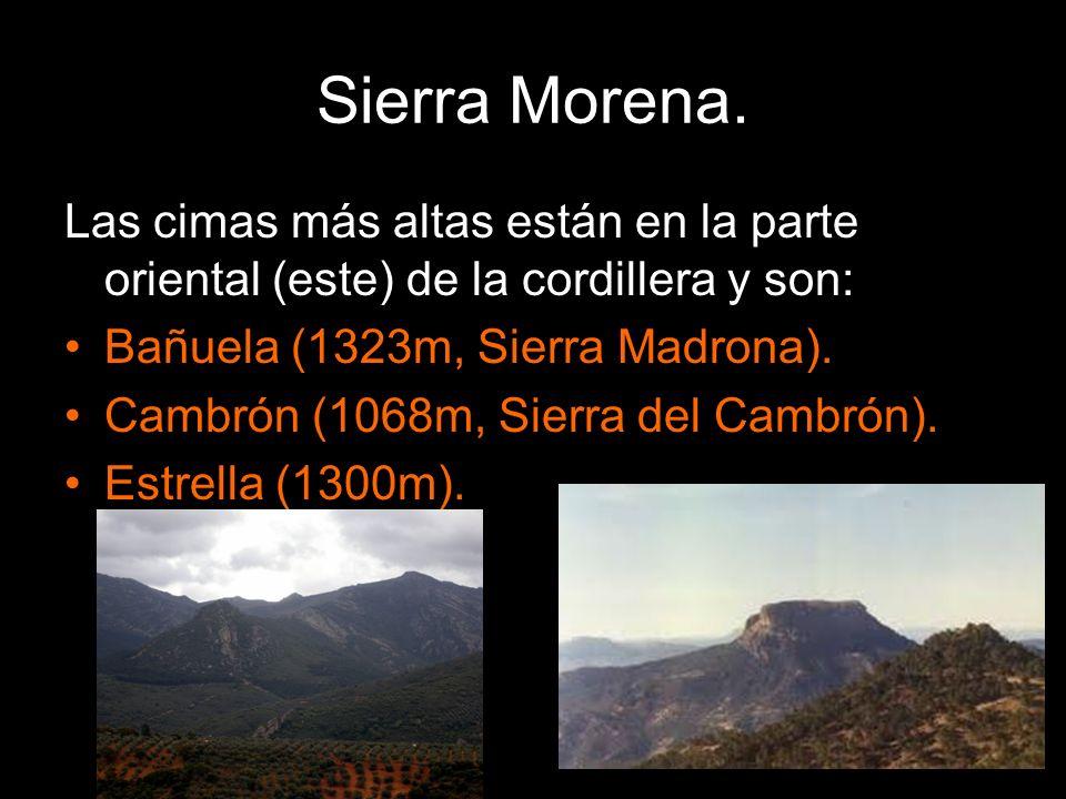 Las cimas más altas están en la parte oriental (este) de la cordillera y son: Bañuela (1323m, Sierra Madrona). Cambrón (1068m, Sierra del Cambrón). Es
