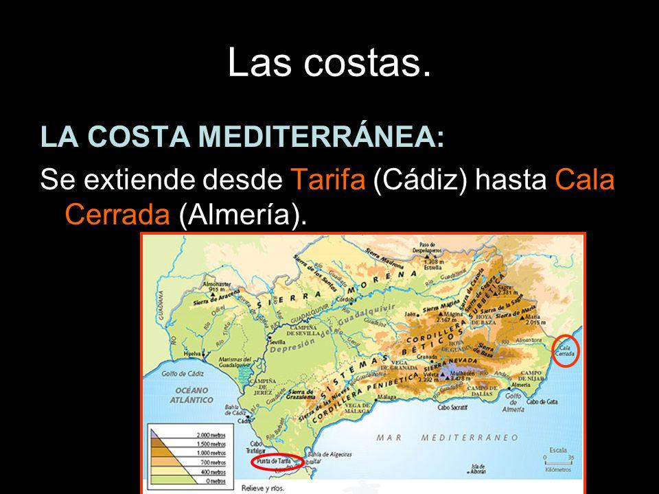 LA COSTA MEDITERRÁNEA: Se extiende desde Tarifa (Cádiz) hasta Cala Cerrada (Almería).