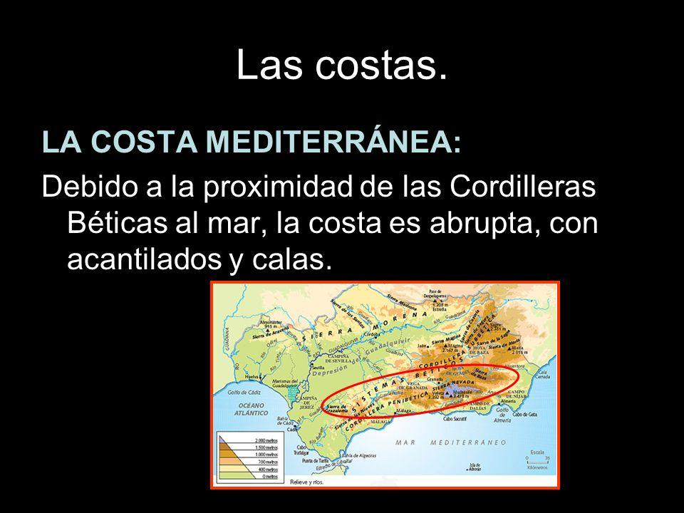 Las costas. LA COSTA MEDITERRÁNEA: Debido a la proximidad de las Cordilleras Béticas al mar, la costa es abrupta, con acantilados y calas.
