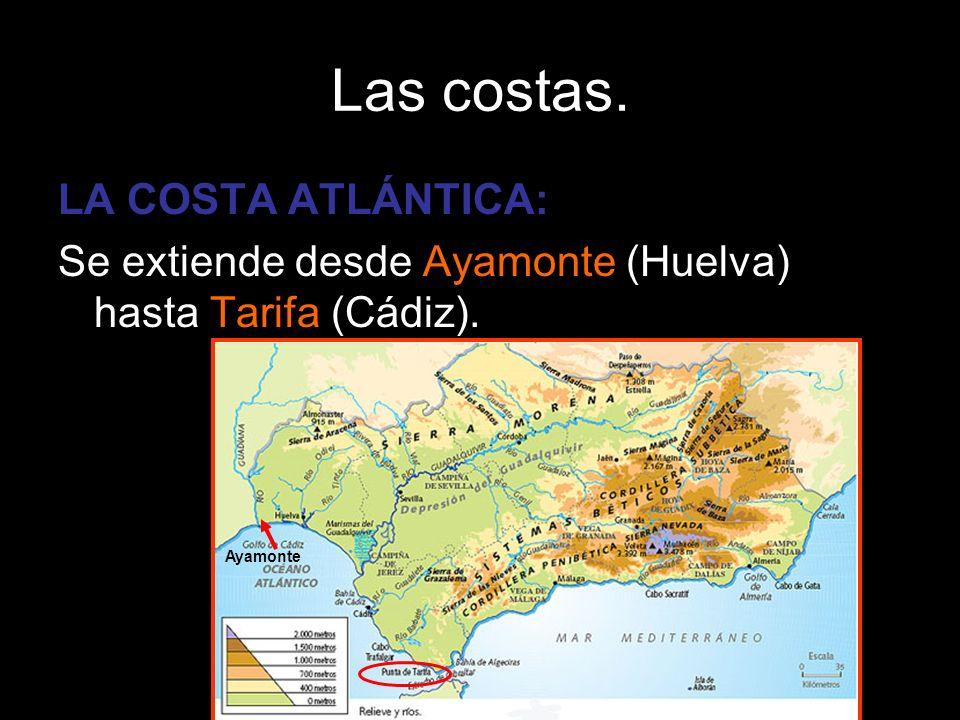 LA COSTA ATLÁNTICA: Se extiende desde Ayamonte (Huelva) hasta Tarifa (Cádiz). Ayamonte