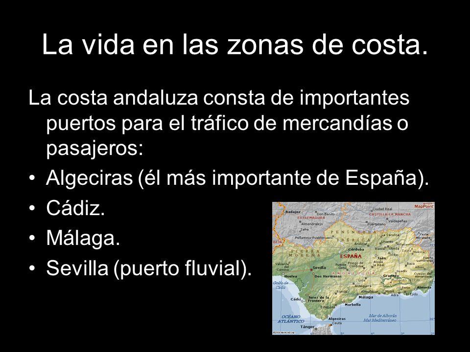 La vida en las zonas de costa. La costa andaluza consta de importantes puertos para el tráfico de mercandías o pasajeros: Algeciras (él más importante
