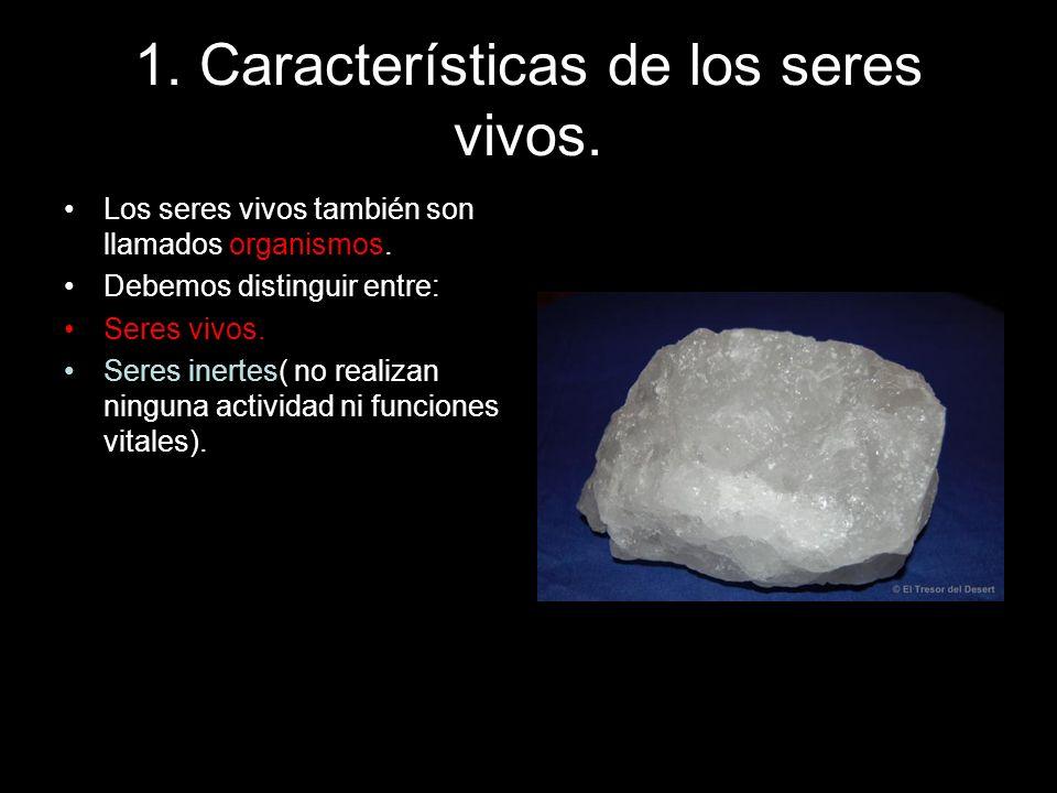 1. Características de los seres vivos Algunos seres inertes.