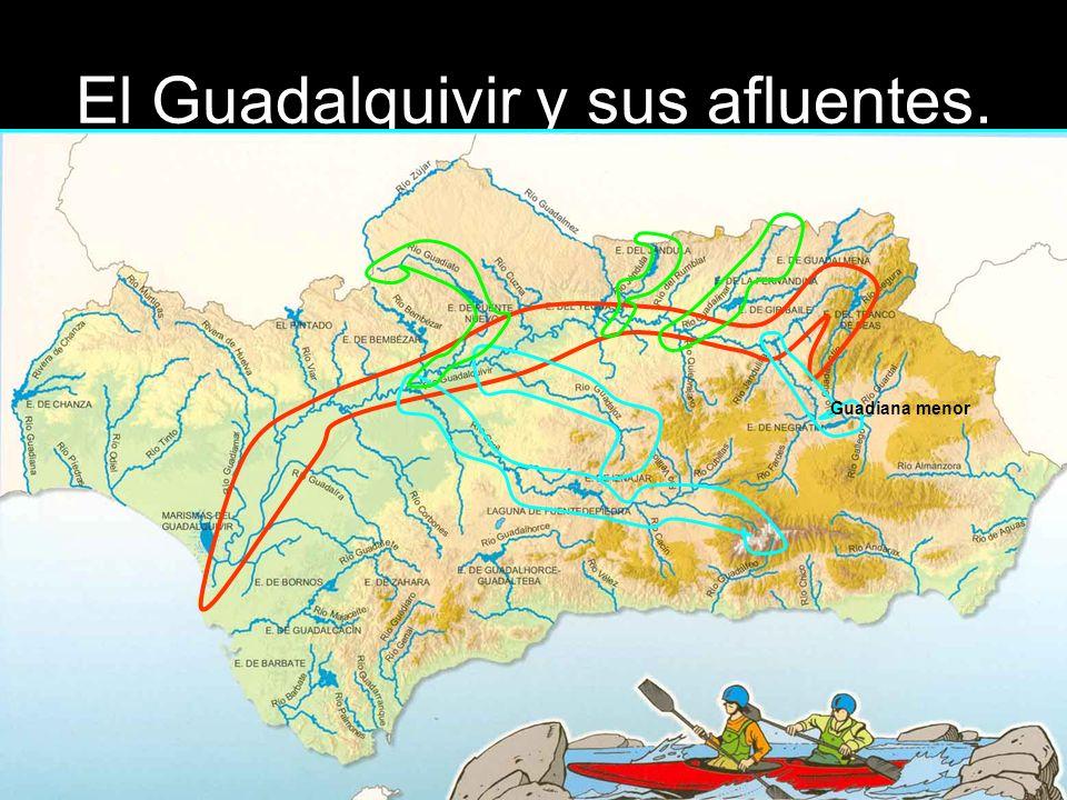 El Guadalquivir y sus afluentes. Guadiana menor