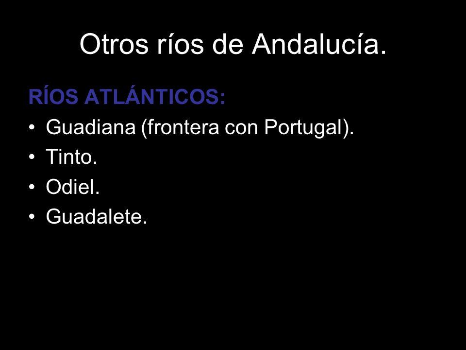 RÍOS ATLÁNTICOS: Guadiana (frontera con Portugal). Tinto. Odiel. Guadalete.