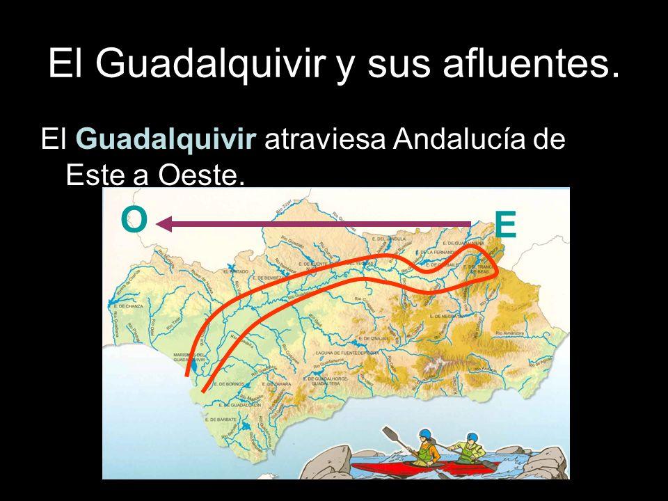 Otros ríos de Andalucía.