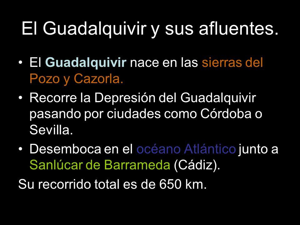 El Guadalquivir nace en las sierras del Pozo y Cazorla. Recorre la Depresión del Guadalquivir pasando por ciudades como Córdoba o Sevilla. Desemboca e